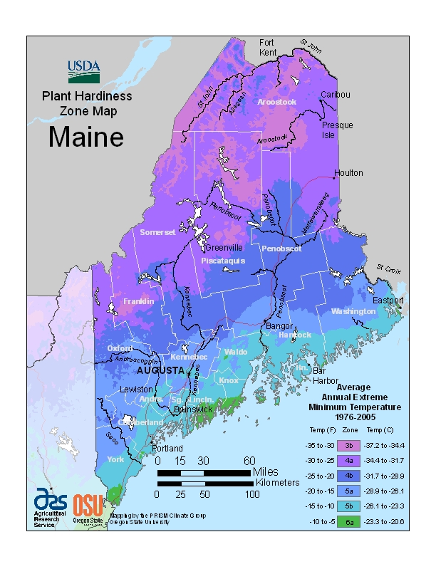 USDA ZONE MAP MAINE