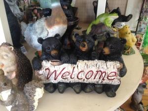 Bear Cub Welcome