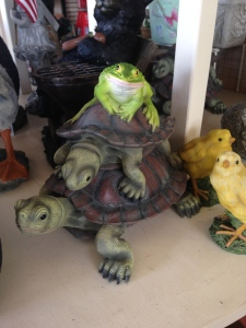 Turtles & a Frog