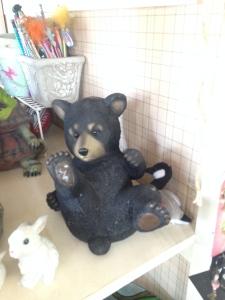 Rolling Bear Cub